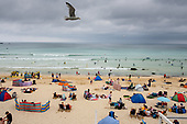 A gull flies over Porthmeor beach, St.Ives, Cornwall.