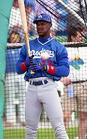 Los Angeles Dodgers Eric Davis (33) during Spring Training 1993 at Baseball City Stadium in Davenport, Florida.  (MJA/Four Seam Images)