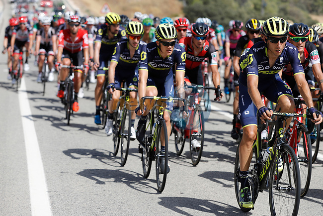 The peloton including Chris Juul-Jensen (IRL/DEN) Orica-Scott in action during Stage 8 of the 2017 La Vuelta, running 199.5km from Hell&iacute;n to Xorret de Cat&iacute;. Costa Blanca Interior, Spain. 26th August 2017.<br /> Picture: Unipublic/&copy;photogomezsport | Cyclefile<br /> <br /> <br /> All photos usage must carry mandatory copyright credit (&copy; Cyclefile | Unipublic/&copy;photogomezsport)