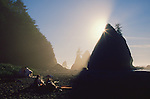 Olympic National Park, Shi Shi Beach, Point of the Arches, Washington State, Pacific Northwest, couple camping on the beach, sea stacks, sunset,  Pacific Ocean, Northwest coast, Olympic Peninsula, North America, USA,..