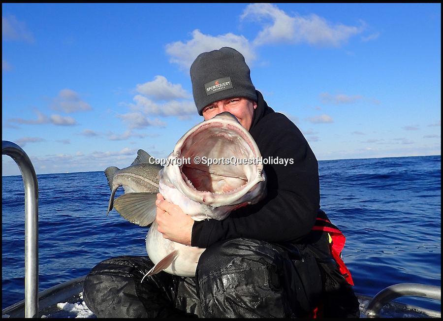 BNPS.co.uk (01202 558833)<br /> Pic: SportsQuestHolidays/BNPS<br /> <br /> Paul Stevens with his 83lbs cod.<br /> <br /> Two British fisherman are celebrating today after landing two of the biggest cod ever caught.<br /> <br /> Paul Stevens was overjoyed with his monster effort of 83lbs but then his fisherman friend Bert Williams battered it the next day with a 93lbs beast.<br /> <br /> Grandfather Bert's fish is the biggest cod ever caught by a British angler but is still 10lbs off the world record.