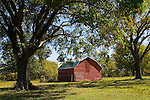 Red metal barn in a grove of trees in rural Oklahoma