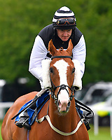 Acker Bilk ridden by Liam Kenny goes down to the start of The DEOS Group Handicap during Evening Racing at Salisbury Racecourse on 11th June 2019