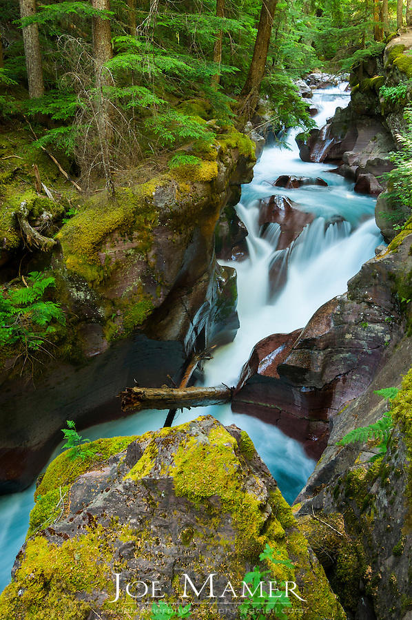 Avalanche Creek gorge in Glacier National Park