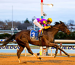 OZONE PARK, NEW YORK, MARCH 03: Midnight Disguise, #3, ridden by Trevor McCarthy, wins the Busher Stakes at Aqueduct Race Track on March 3, 2018 in Ozone Park, New York. (Heary/Eclipse Sports/Getty Images).