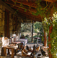 A brood of hens peck at the dirt on the sunlit porch