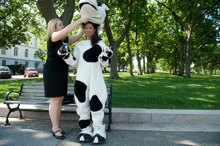 UNITED STATES - MAY 16: PETA's Katie Arth helps Gabby Bess with her cow suit as they arrive in Upper Senate Park to protest against the consumption of cow's milk on Monday morning, May 16, 2011. They were there for the Grassfed on the Hill rally, a protest of the recent action of the Food and Drug Administration against traditional dairy farmers. (Photo By Bill Clark/Roll Call)