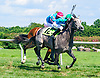 Rum Go winning at Delaware Park on 8/4/16