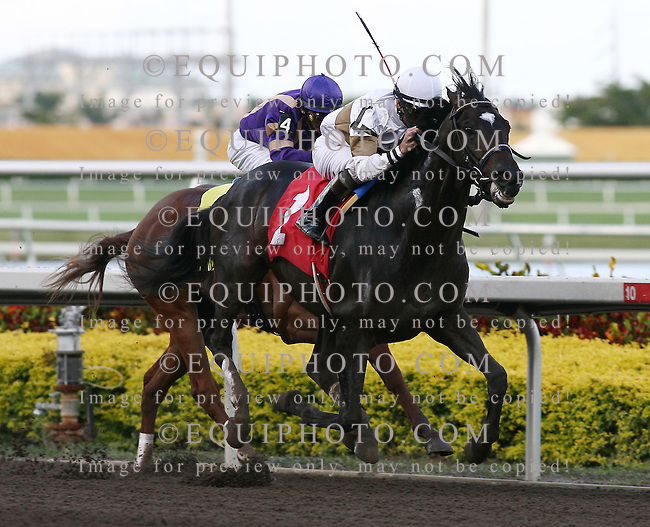 Bold Start with Kent Desormeaux riding won the 8th race at Gulfstream Park on 1/13/07.  Photo By Bill Denver/EQUI-PHOTO.