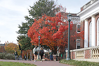 Fall colors the trees and campus at the university of Virginia in Charlottesville, Va. Photo/Andrew Shurtleff Photography, LLC