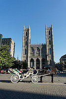 A horse-drawn carriage or caleche in front of  Place d'Armes and Notre Dame Basilica, Old Montreal Quebec, Canada