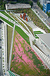 Aerial view looking north at Seattle's Olympic Sculpture Park.  Richard Serra's 'Wake' is the 5-piece sculpture at top as native summer wildflowers bloom in the meadow area.