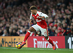 Arsenal's Alex Oxlain-Chambers in action during the Premier League match at the Emirates Stadium, London. Picture date October 26th, 2016 Pic David Klein/Sportimage