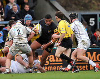 High Wycombe, England. Zak Taulafo of London Wasps charges forward during the Aviva Premiership match between London Wasps and Sale Sharks at Adams Park on December 23. 2012 in High Wycombe, England.
