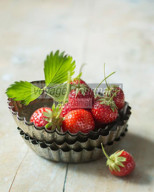 France, Indre-et-Loire (37), Vallée de la Loire, Chouzé-sur-Loire: Fraises du val de Loire, variété Anaïs  // France, Indre et Loire, Amboise, Loire Valley, Chouzé-sur-Loire: Loire valley Strawberries, Strawberry 'Anais' - Stylisme : Valérie LHOMME