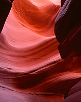 AZNEA_03 -  Erosion of Navajo Sandstone by water has resulted in the dramatic contours of Lower Antelope Canyon, Antelope Canyon Navajo Tribal Park, northeast Arizona, USA - (4x5 inch original, File size: 6000x7533, 129mb uncompressed).