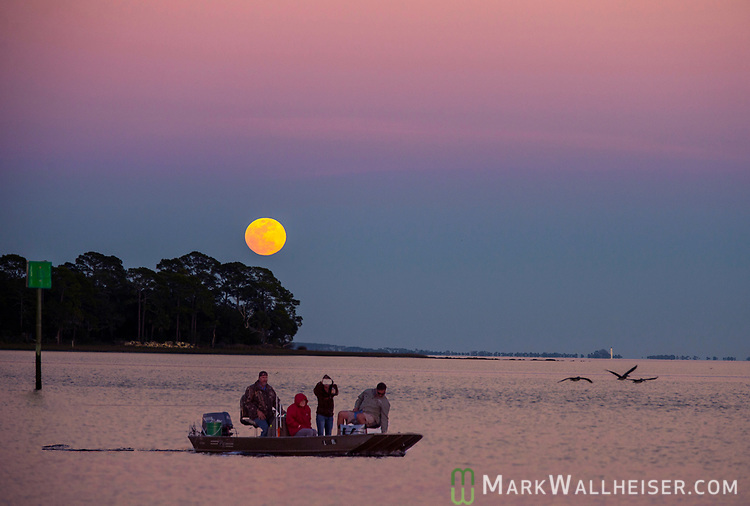 Sunset watchers idle their boat out of Shell Point as the Snow moon rises over Live Oak Island in Wakulla County along the Forgotten Coast of the Florida panhandle.<br /> The St. Marks Lighthouse sits on the horizon at right above the pelicans.