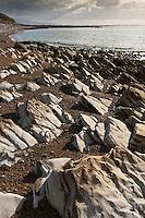 Europe/France/Aquitaine/64/Pyrénées-Atlantiques/Pays-Basque/Guéthary:  La côte sur le sentier littoral - es roches de la plage de Guéthary, appelées flysch calcaires à silex