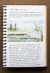 Skagit Estuary, Journal Art 2004