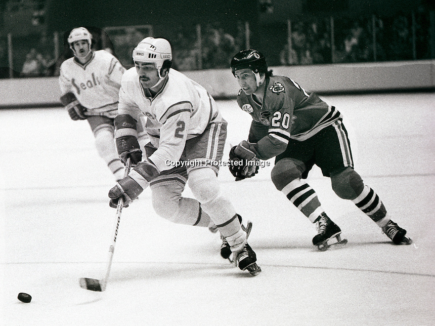 California Seal Rick Hampton chased by Cliff Coroll of Chicago Black Hawks. photo/Ron Riesterer
