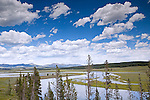 Hayden Valley, best known for wildlife viewing, also offers stunning subalpine meadow landscapes for photographers.  Yellowstone National Park, the first National Park in the world, still enthrals over three million visitors a year with it's geothermal features,wildlife,  rugged mountains, deep canyons and stunning ecosystem.