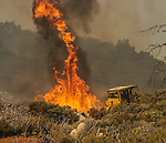 September 12, 2004 Buck Meadows --Tuolumne Fire –- CDF Bulldozer 4242 controls spot fire on Cherry Oil Road. The Tuolumne Fire was a small very fast-moving fire that started around noon on September 12, 2004 near Lumsden Bridge at the bottom of the Tuolumne River.  The fire moved rapidly up the more than 80-degree slope catching Cal Fire Helitack firefighters, tragically killing firefighter Eva Marie Schicke and injuring five others.