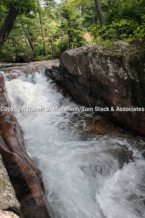 Little Flume, Pemigewasset River, Lincoln, New Hampshire, vertical
