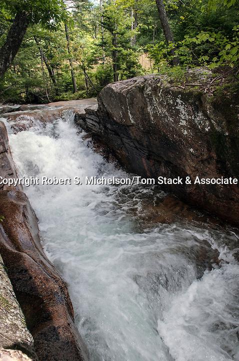 Little Flume, Pemigewasset River, Lincoln, New Hampshire, vertical