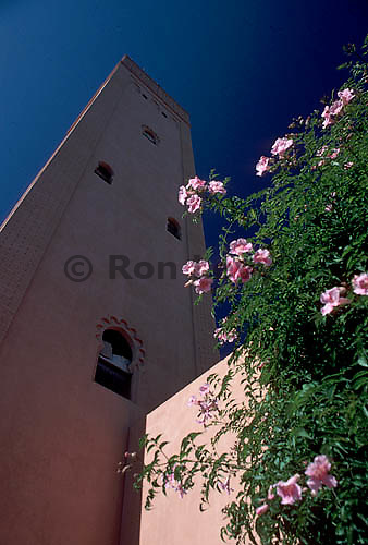 Kasbah and flowers, Marrakesh, Morocco