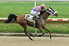 Grande Mistress winning at Delaware Park on 9/29/10