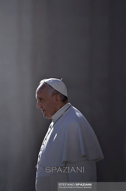 Pope Francis The Statue of Our Lady of Lourdes during his weekly general audience in St. Peter square at the Vatican, Wednesday. February 11, 2015