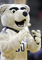 24 January 2009:  Washington Huskies  mascot Harry entertained the crowed in attendance against UCLA at the Bank of America Arena at Hec Edmundson Pavilion in Seattle, WA.  Washington won 86-75 over UCLA.