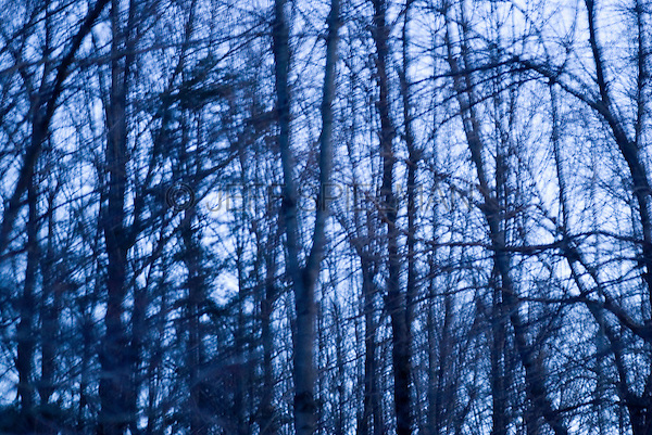 AVAILABLE FOR LICENSING FROM GETTY IMAGES. Please go to www.gettyimages.com and search for image # 132444995.<br />