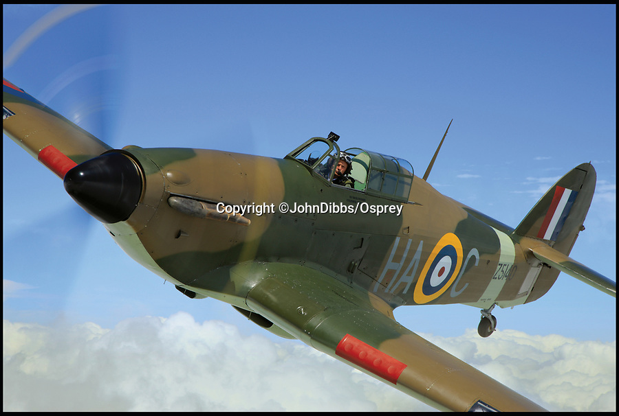 BNPS.co.uk (01202 558833)<br /> Pic: JohnDibbs/Osprey/BNPS<br /> <br /> This Canadian built Hurricane is painted in the colours of Z5140 that defended 'Fortress Malta' during WW2.<br /> <br /> Last of the Few - A photographer's stunning new book is a tribute to the last Hawker Hurricane's - the true workhorse of the Battle of Britain.<br /> <br /> Only 13 WW2 Hurricanes are still airworthy today, compared to over 60 of their more glamorous counterpart the Spitfire.<br /> <br /> But during the Battle of Britain there were in fact twice as many Hurricane's as Spitfires taking on Hitlers Luftwaffe in the skies over southern England.<br /> <br /> The Hurricane may be viewed as less glamorous than the Spitfire, but these stunning photographs reveal just how majestic it was in full flight.<br /> <br /> Photographer John Dibbs has got up close and personal to the legendary fighter planes in order to capture them like never before.<br /> <br /> His 10 year quest for surviving Hurricanes took him all over the world and he photographed them in England, France, the United States and New Zealand.<br /> <br /> Using the skill and experience of highly experienced RAF and civilian pilots, Mr Dibbs was able to fly to within 15ft of some of the last remaining Hurricanes - with breath-taking results.<br /> <br /> There was a fair degree of skill involved as he took the photos from the canopy of a Second World War trainer aircraft which was travelling at 200mph while confronting wind blast.<br /> <br /> The thrilling photos were taken for an a definitive history of the Hurricane which is told by Mr Dibbs and aviation historians Tony Holmes and Gordon Riley in their new book Hurricane, Hawker's Fighter Legend.