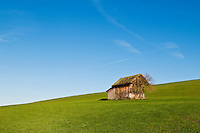 Small wooded barn in grass farm field, Allgäu, Bavaria, Germany