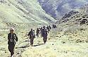 Iraq 1980 <br /> Masoud Barzani in the valley of Wezne, planning to attack Jelal Talabani  <br /> Irak 1980 <br /> Masoud Barzani dans la vallee de Wezne, avec ses peshmergas, en route avec le projet d' attaquer Jalal Talabani