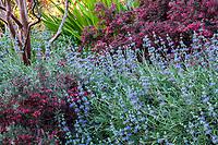The Arlington Garden