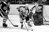 Seals Ted McAneeley and goalie Gilles Meloche against the Boston Bruins . (1975 photo/Ron Riesterer)