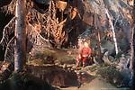 Волшебное озеро (1979)