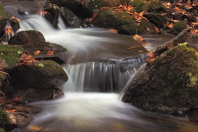 A pretty cacade along the Monadnock-Metacomet trail in Belchertwon, Massachusetts in Autumn.