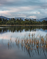 Dawn at Lake Mahinapua near Hokitika, West Coast, Westland, New Zealand, NZ