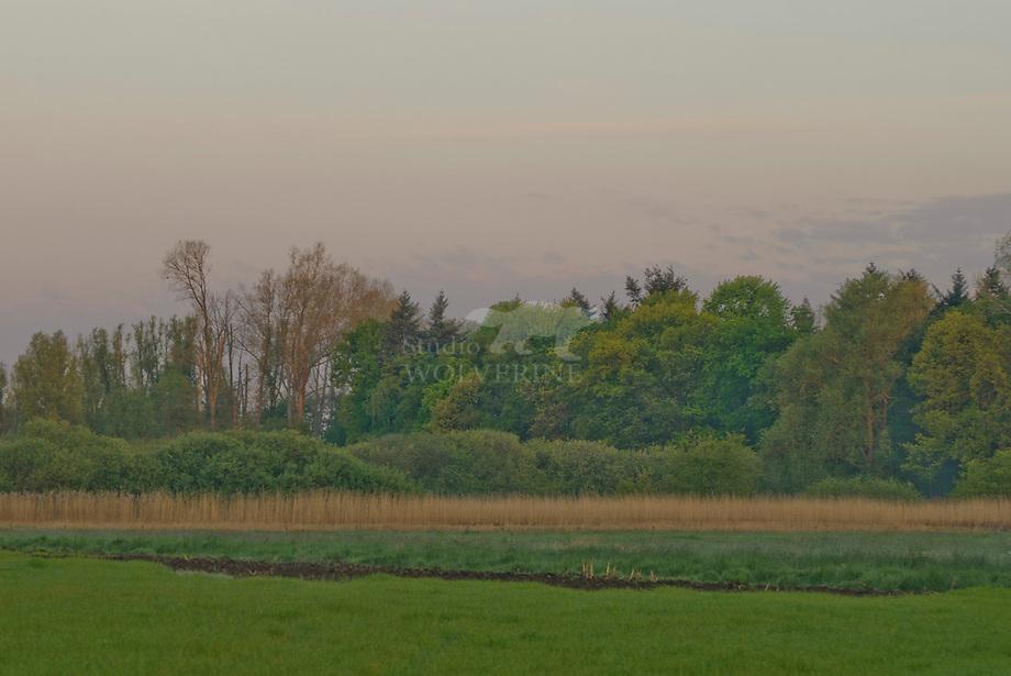 Coulissen landschap met houtsingels, Haanwijk