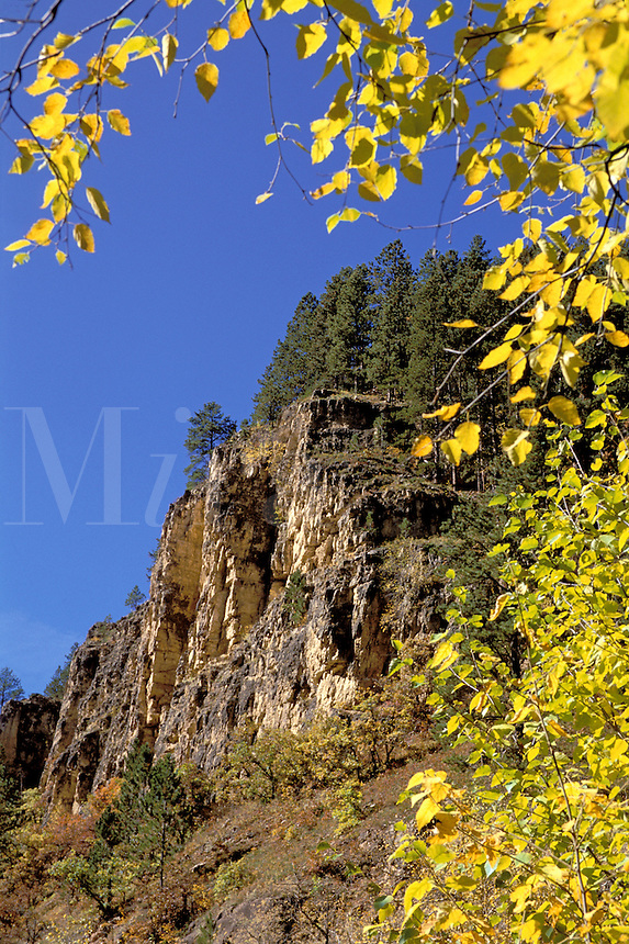 Limestone formations along Forest Road 222 west of Savoy South Dakota Spearfish Canyon National Scenic Byway.