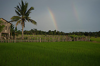 on the road from Battambang  to Phnom Penh, Cambodia rural area