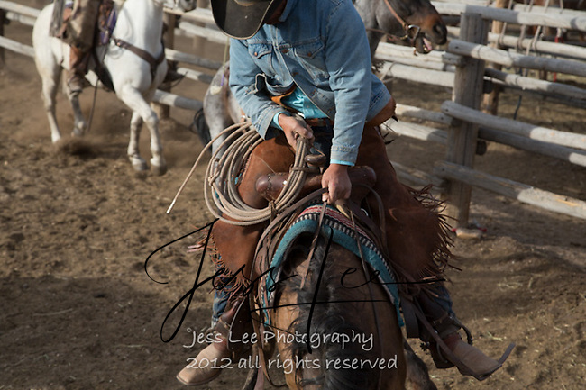 hanging on Cowboys working and playing. Cowboy Cowboy Photo Cowboy, Cowboy and Cowgirl photographs of western ranches working with horses and cattle by western cowboy photographer Jess Lee. Photographing ranches big and small in Wyoming,Montana,Idaho,Oregon,Colorado,Nevada,Arizona,Utah,New Mexico.
