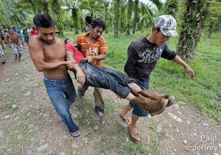 Family and friends carry the body of Carlos Martinez from where he was found murdered in a grove of African palm oil trees. The 23-year old farmworker who was shot to death on October 2 on the La Lempira Cooperative outside Tocoa, Honduras. Martinez and other members of the cooperative are among thousands of Honduran activists who have seized plantations they claim were stolen from them by wealthy Honduras businessmen. The Honduran security forces have militarized the area, and killings of peasant leaders have become common. Many of the cooperatives were started with assistance from Catholic priests and lay pastors in the region, and some Catholic leaders remain close supporters of the peasant movement. A sister of Martinez claimed he was killed by a security guard from a nearby plantation belonging to Miguel Facusse, the wealthiest of Honduran landowners.