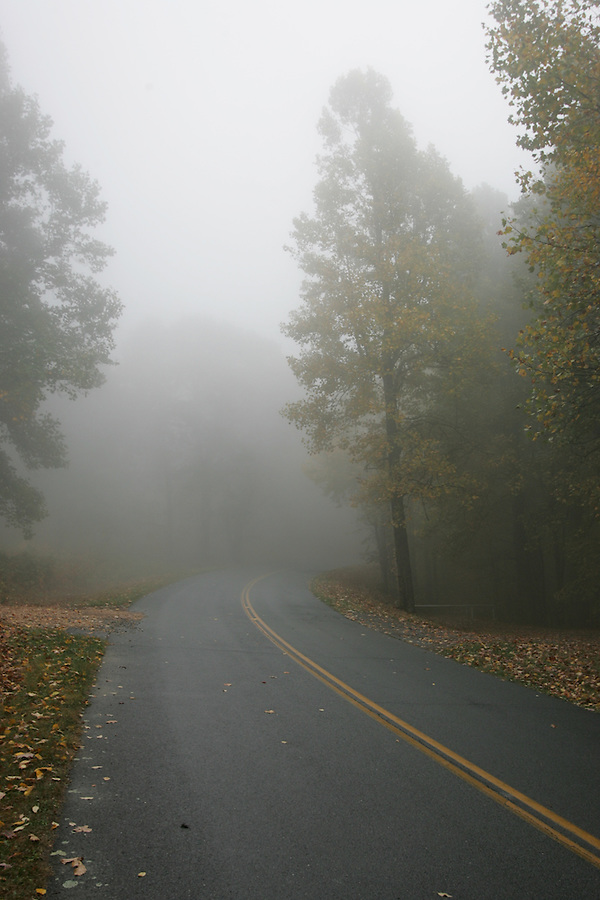 Foggy road on the Blue Ridge Parkway.