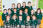 Firies NS junior infants on their first day at school on Wednesday front row l-r: Ella Mai Cronin-O'Connor, Grace O'Sullivan, Jack Duggan, Faye O'Brien, MaisyO'sullivan, Middle row: Daithí Allen, Avery Hood, Daniel Ryan, Ava O'sullivan, Colin O'Meara, Killian Moynihan, Aoibhin O''Flaherty, Back row: Leanne Collins, Shauna Falvey, Ruby O'Connor, and Michael O'Donovan