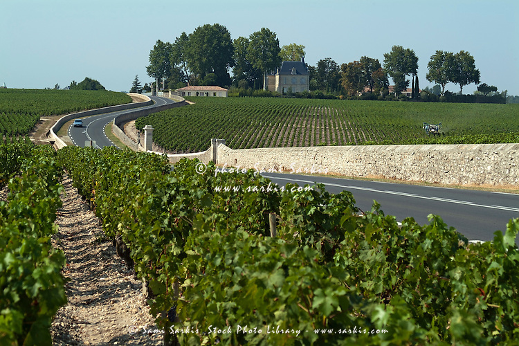 Road in between vineyards, Haute Medoc, Gironde, Bordeaux, France.