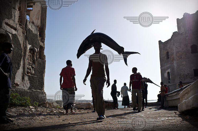 Young men carry recently caught fish from the beach to the market in Mogadishu. The price of fish has risen fourfold due to the arrival of new restaurants and hotels to the city, enabled the fishermen to make a lot more money.